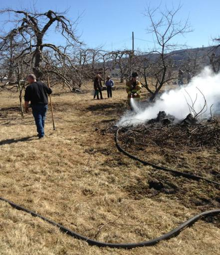 Extinguishing the brush fire